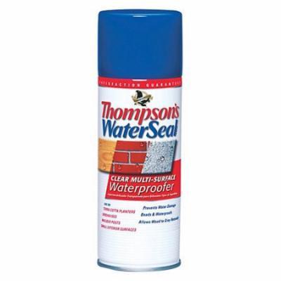 Thompson's Waterseal Clear Multi-Surface Waterproofer, Aerosol