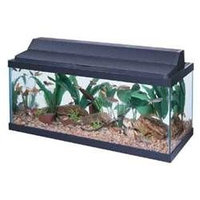 All Glass Aquarium AAG21230 30 in. Fluorescent Deluxe Black Hood