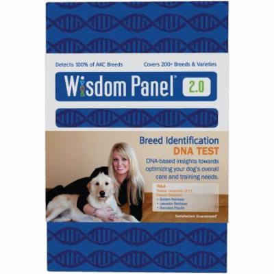 Wisdom Panel 2.0 Breed Identification Dna Test Kit For Dogs