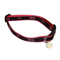 Sporty K9 NBA Dog Collar