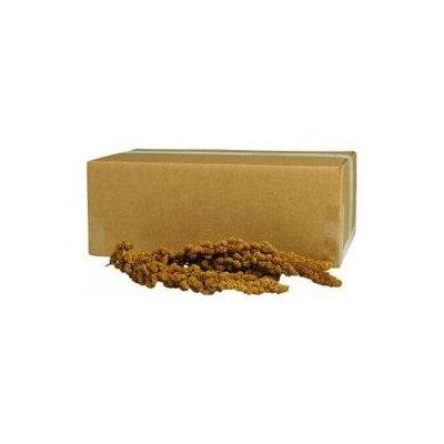 Central Avian & Kaytee Gold Millet Spray Bulk 500 Count