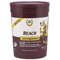 Farnam Company Farnam Co Horse Health Reach Joint Supplement 2.8 Pound