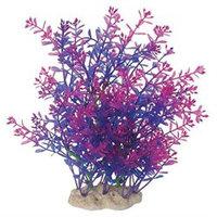 Pure Aquatics Pure Aquatic Natural Elements Lindernia Technicolor Aquarium Ornament in Purple