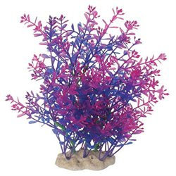 Pure Aquatics Pure Aquatic Natural Elements Lindernia Technicolor Aquarium Ornament in Purple