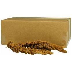 Sun Seed Kaytee Products Wild Bird Gold Spray Millet Treat