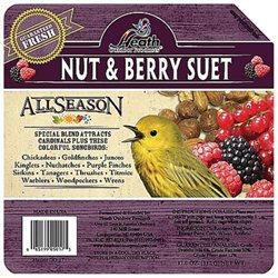 Heath Premium Nut And Berry Suet Cak - DD-17