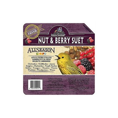 Heath Premium Nut And Berry Suet Cak - DD-17