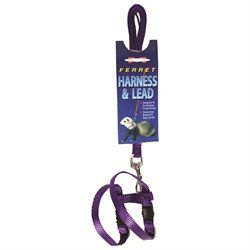 Marshall Pet Products Harness Lead Set Purple 48 Inches FP093