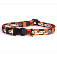 Yellow Dog Design HH101S Happy Halloween Standard Collar - Small