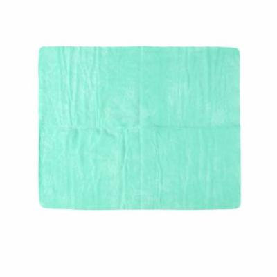 Home Furniture Glass Water Absorb Clean Cham Towel 43cm x 32cm Green