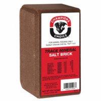 TRACE MINERAL SALT BRICK 4LB