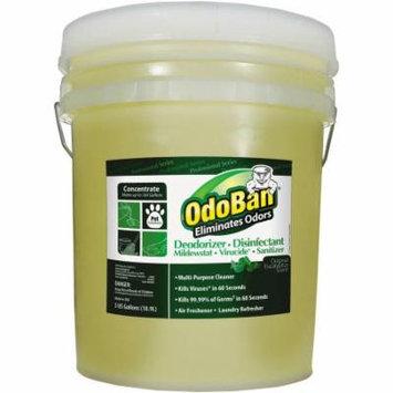 OdoBan Professional Series Eucalyptus Scent Deodorizer Disinfectant, 5 gal