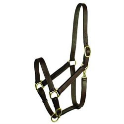 Choice Brands Gatsby Leather 203S/5 Stable Halter With Snap