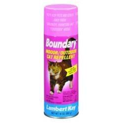 indoor cat repellent home remedy