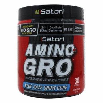 iSatori - Amino-Gro Muscle Building Amino Acid Formula Blue Razz Snow Cone - 9.52 oz.