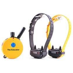 E-Collar Technologies Einstein Remote 2 Dog Trainer 3/4 mile