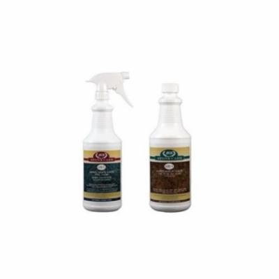Stone Cleaner and Sealer Silver Kit