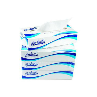 Windsoft Facial Tissue 2p 100 Sheets Boxed 6