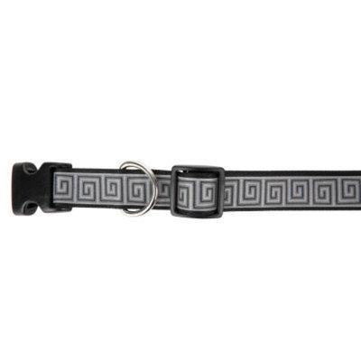 Lazer Brite Reflective Dog Collar