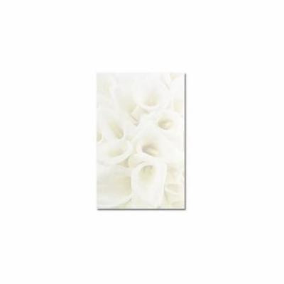 Great Papers 958135 White Calla Lilies Bifold Brochure
