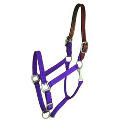 Choice Brands Gatsby Breakaway Halter Purple Horse - 401101-2960-3670