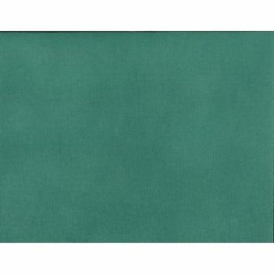Silhouette Adhesive-backed Cardstock, Emerald