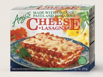 Amy's Kitchen Cheese Lasagna