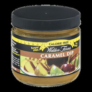 Walden Farms Caramel Dip Calorie Free