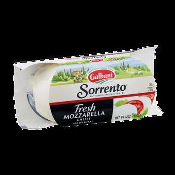 Sorrento Galbani Fresh Mozzarella Cheese
