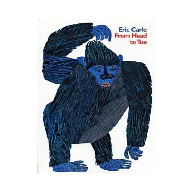 From Head to Toe (Hardcover)
