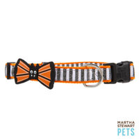 Martha Stewart PetsA Bat Bow Striped Collar