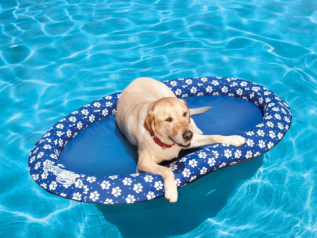 Swimways SwimWays Spring Float for Dogs - Paddle Paws Large
