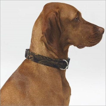 Bowsers Dog Collar in Windsor Microvelvet Size: X-Small