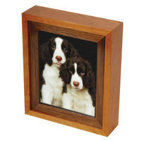 Star Legacy Picture Perfect Cherry Pet Urn