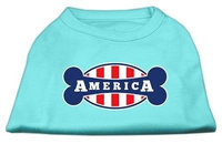 Ahi Bonely in America Screen Print Shirt Aqua XXL (18)
