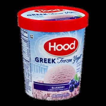 Hood Greek Frozen Yogurt Blueberry
