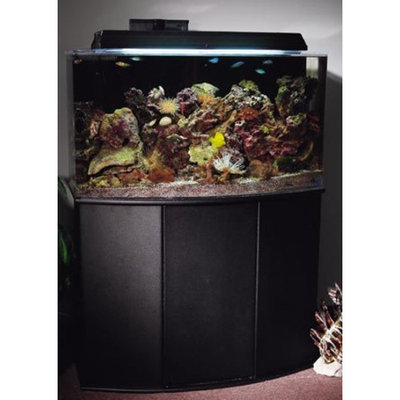 Aquatic Fundamentals Black 16 Upright Bowfront Aquarium Stand