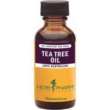 Herb Pharm Tea Tree Oil Steam-Distilled Essential Oil, 1 FL OZ