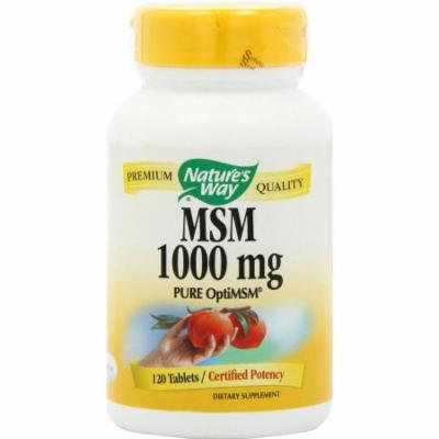 Nature's Way MSM Vegetarian Capsules, 120 CT