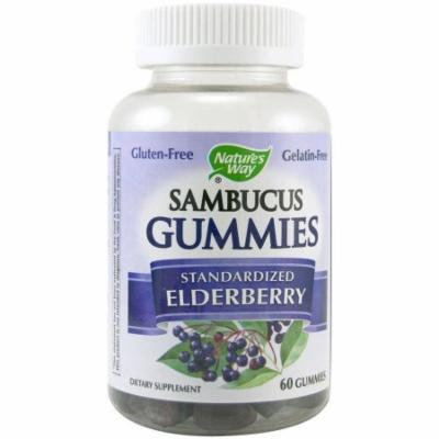 Nature's Way Sambucus Standardized Elderberry Gummies , 60 CT