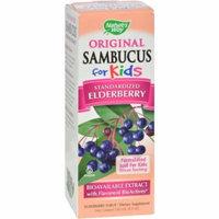 Nature's Way Sambucus Kids Berry Syrup, 8 OZ