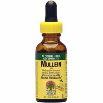Nature's Answer Alcohol-Free Mullein Leaf, 1 OZ