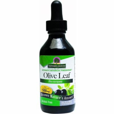 Nature's Answer Alcohol-Free Oleopein Olive Leaf, 2 OZ