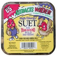 C & s Products 12 Piece High Energy Suet For Year Round Wild Bird Feeding CS12501 - Pack of 12