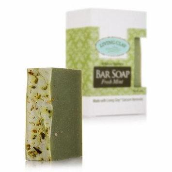 Bar Soap - Fresh Mint - 4 oz by Living Clay