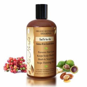 Ki Herbs Organic Herbal Restoration Shampoo with 18 Live Essential Nutrients 12oz