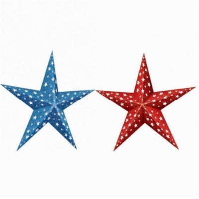 Amscan 249440 3D Patriotic Paper Stars - Pack of 12