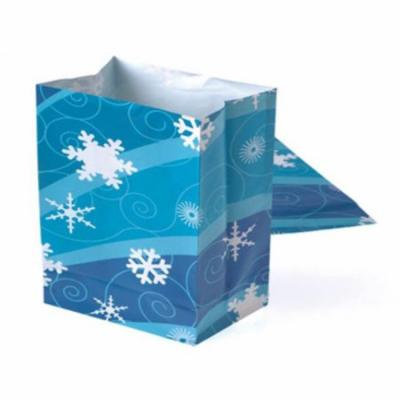 DDI 1905543 Winter Season Paper Bags, 12 Piece