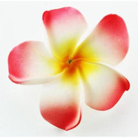Hawaiian Flower Hair Clip Tropical Flower Summer Hair Accessory (Pink Yellow)
