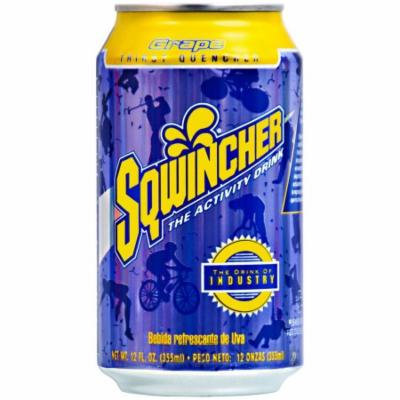 Sqwincher 12 oz Ready to Drink Can, Grape 100102-GR (Case of 24)